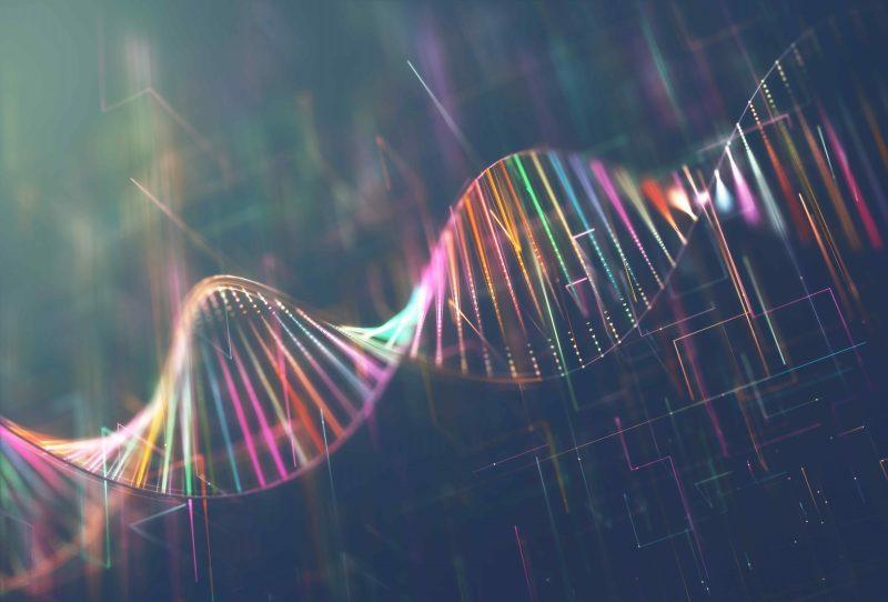 Nature's blueprint: the DNA. (imageshack.com/ktsimages)
